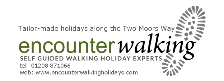 encounter walking