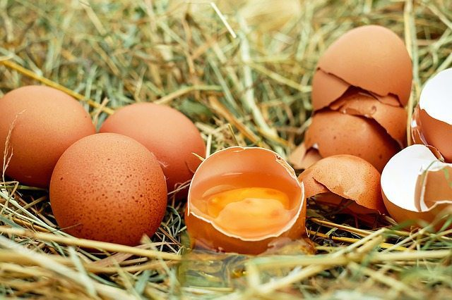 Eggs – 'Natures Superfood'