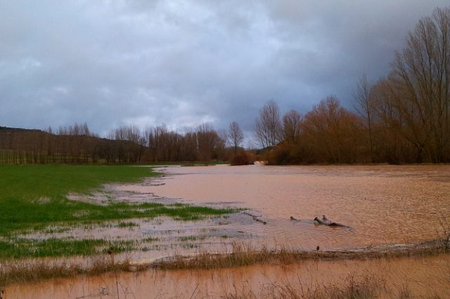 Advice for farmers affected by flooding