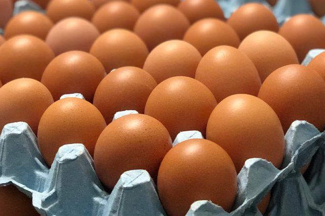 egg shell quality
